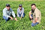 Soils and Pasture Project Ramps Up