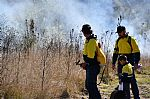 Aboriginal Cultural Burning in the Spotlight